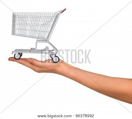 Shopping cart in humans hand