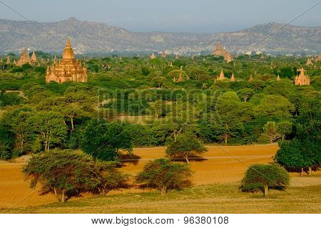 Scenic View Of Landscape, Fields And Temples In Bagan, Myanmar