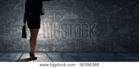 Rear view of businesswoman looking at chalk business sketches on wall