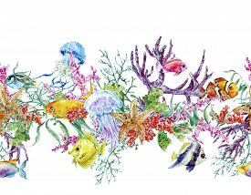 stock photo of algae  - Summer Vintage Watercolor Sea Life Seamless Border with Seaweed Starfish Coral Algae - JPG