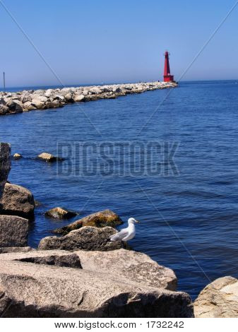 Seagull On Rocks And Lighthouse