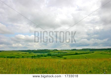 Meadow Landscape