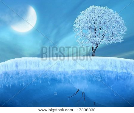 Frozen tree on ice