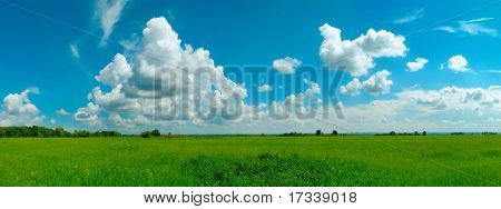 romantic summer landscape. panorama from 5 frames