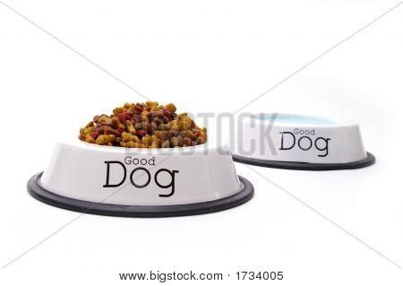 Good Dog Care
