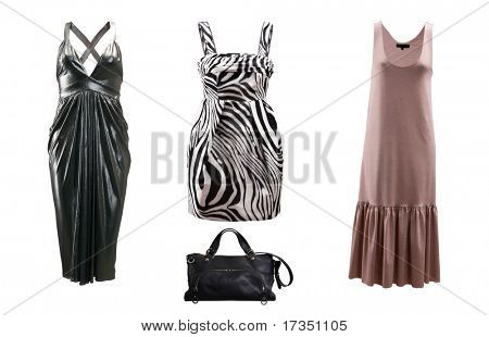 collection of female fashion dress