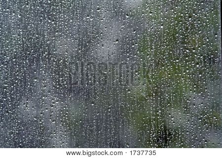 Rain Of Window