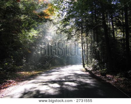 Road With Light Rays