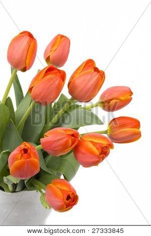 A bouquet of elegant tulips in a beautiful pitcher vase