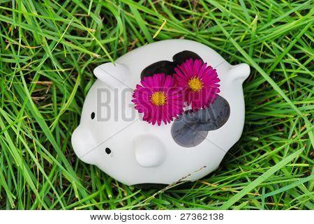 Piggy bank on grass