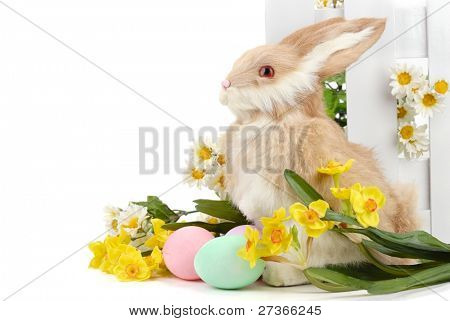 Easter bunny and eggs with flowers on the white.