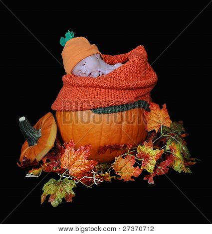Adorable Infant Baby Sleeping In A Real Pumpkin. Isolated