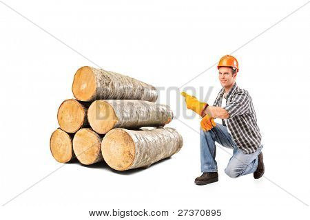 A smiling worker pointing on a pile of beech firewood isolated on white background