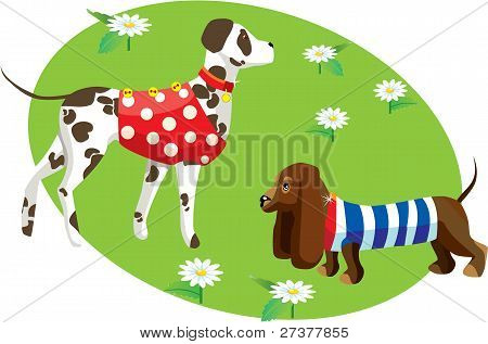 illustration with dogs in clothes (Dalmatian and dachshund)