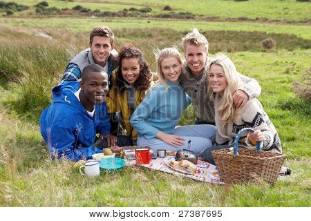 Young adults on country picnic