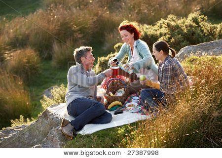 Amigos de picnic del país