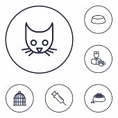 Set Of 6 Mammal Icons Line Style Set. Collection Of Birdcage, Veterinarian, Dish And Other Elements. poster