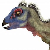 Hypsilophodon Dinosaur Head 3d Illustration - Hypsilophodon Was A Omnivorous Ornithopod Dinosaur Tha poster