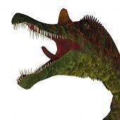 Ichthyovenator Dinosaur Jaws 3d Illustration - Ichthyovenator Was A Carnivorous Theropod Dinosaur Th poster