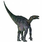 Iguanodon Dinosaur Tail 3d Illustration - Iguanodon Was A Herbivorous Ornithopod Dinosaur That Lived poster