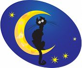 foto of goodnight  - cat on moon in oval frame on blue background - JPG