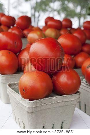 Orangic Tomatoes