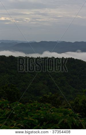 Morning Mist Cover The Mountain , Thailand