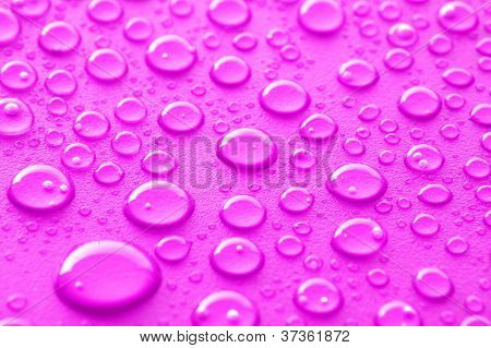 Pink Water Drops
