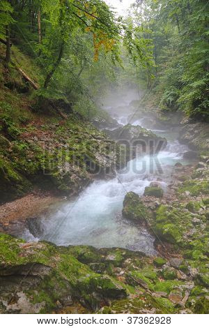 River in Canyon Vintgar - Slovenia, Triglav