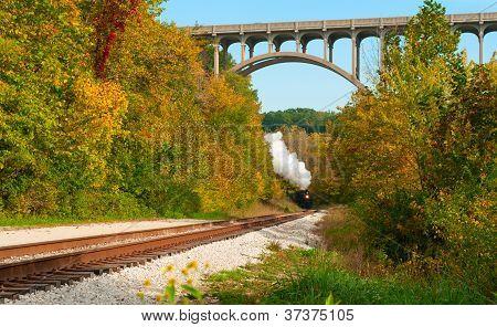 Steam Train Far Off