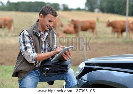 Breeder in farm using digital tablet