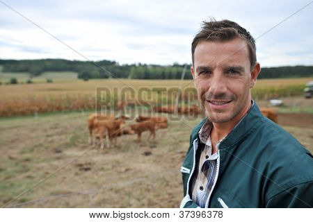 Herdsman standing in front of cattle in country field
