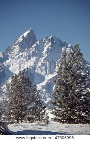 Grand Teton in Winter