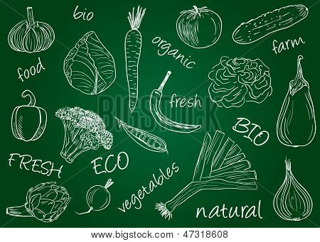 Vegetables Doodles - School Board