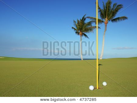 Golf Course By The Beach