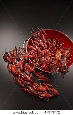 Cray Fish.