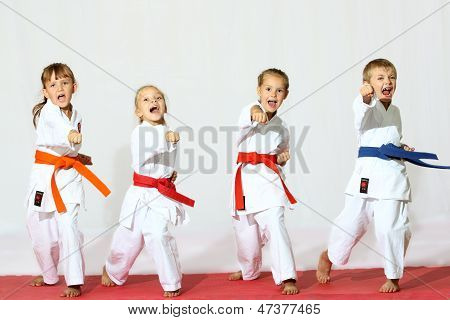 Professionally good sport karate kids