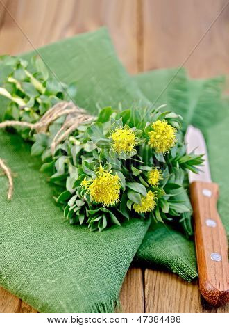 Rhodiola Rosea On The Green Napkin