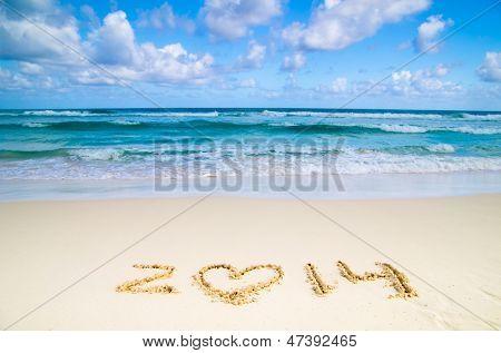 2014 year on the sand beach near the ocean
