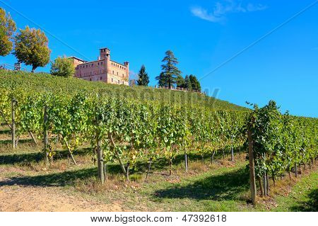 Medieval castle of Grinzane Cavour among vineyards on the downhill under clear blue sky in Piedmont, Northern Italy.