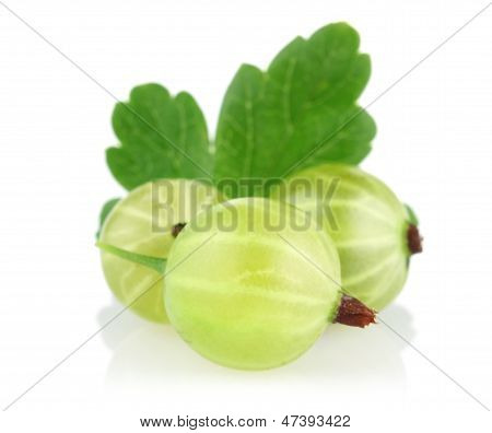 Ripe Gooseberry With Green Leaf