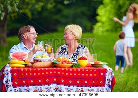 Happy Family Having Picnic Outdoors