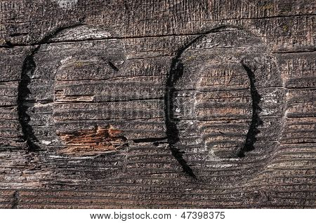 C And O Carved Into Lichen Covered Board