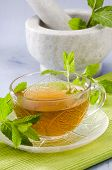 foto of naturopathy  - Mint Herbal Tea in a glass cup - JPG