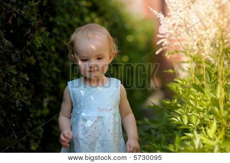 Little baby in an overgrown grass