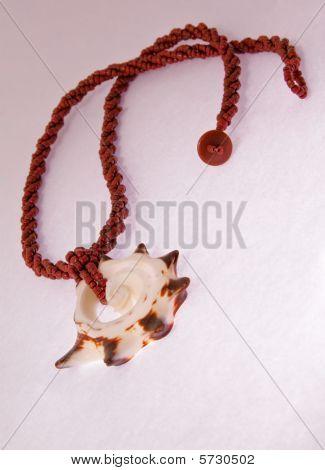 Seashell Collar