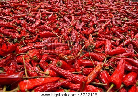 Red hot chili peppers sundried
