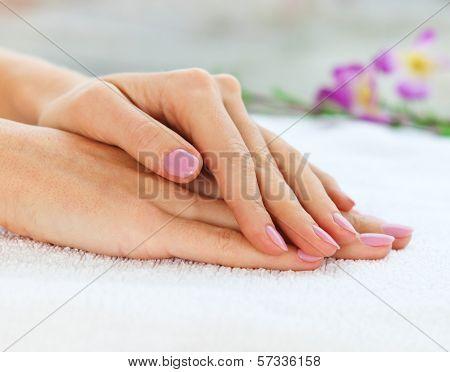 Close Up Shot Of Nicely Manicured Woman Fingernails