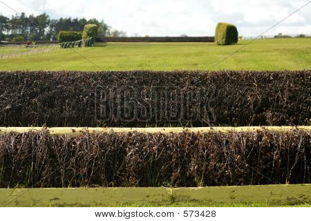 English SteeplechaseFence