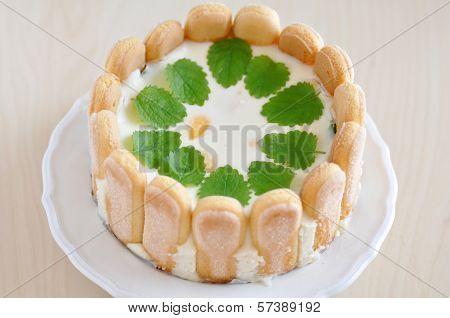 Lemon Cheesecake with Ladyfingers